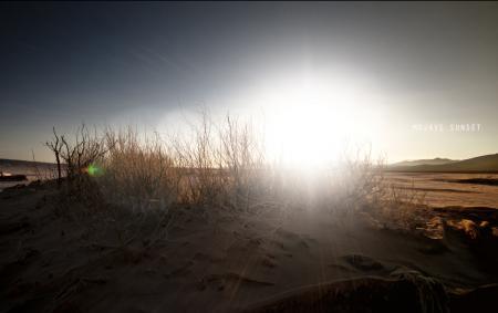 Фотографии mojave sunset, закат в мохаве, пустыня, кустарник