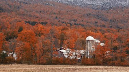 Фотографии вермонт, осень, ферма