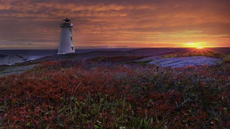 Обои море, побережье, закат, природа