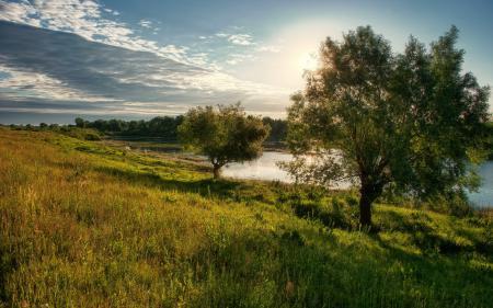Обои лето, река, деревья