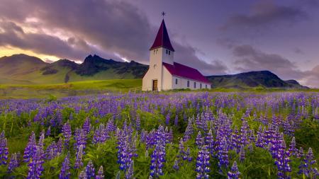 Картинки горы, церковь, луг, цветы