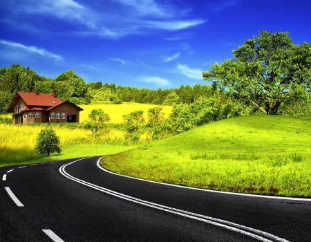 Фотографии природа, пейзаж, трава, деревья
