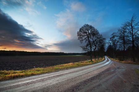Обои дорога, небо, закат, деревья