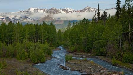 Фотографии Аляска, горы, река, лес