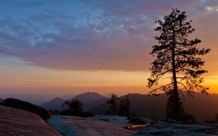 Картинки ночь, горы, дерево, природа