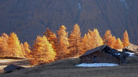Фото горы, дом, деревья