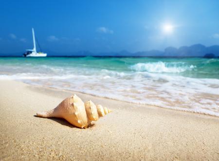 Обои море, прибой, небо, песок