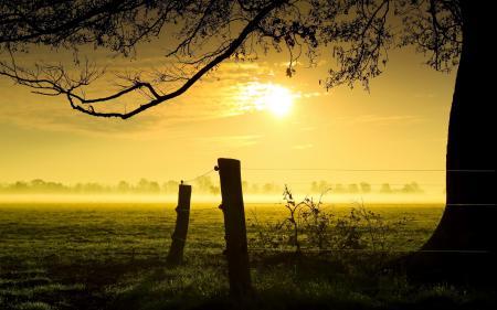 Картинки закат, туман, забор, пейзаж