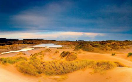 Фотографии горизонт, лето, песок, трава
