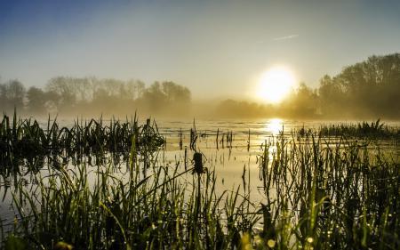 Фото утро, озеро, туман, пейзаж