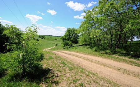 Фотографии дорога, просёлочная, деревья, поля