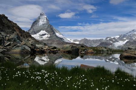 Фото природа, горы, озеро, цветы