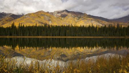Заставки горы, лес, озеро, вода