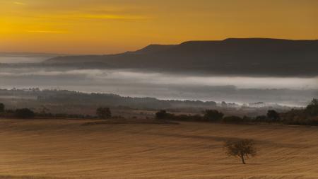 Обои пейзаж, поле, холмы, туман