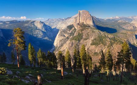 Картинки горы, деревья, ели