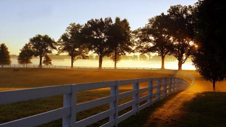 Заставки Morning Mist, Lexington, Kentucky, Утренний