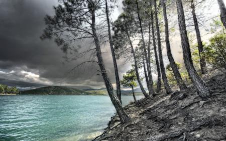 Картинки озеро, деревья, пейзаж