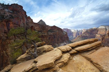 Фотографии горы, скалы, дерево, небо