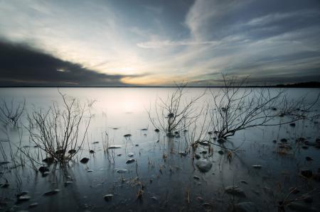 Обои озеро, ветки, небо, природа