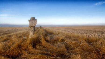 Картинки поле, забор, пейзаж