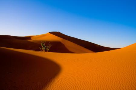 Обои пустыня, небо, дюны, барханы
