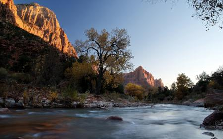 Заставки река, горы, дерево, лето
