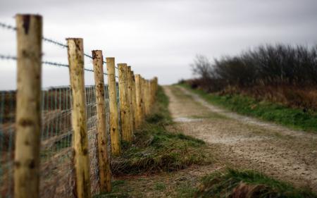 Обои дорога, забор, пейзаж