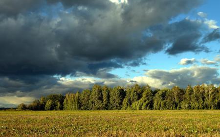 Картинки поле, небо, природа, пейзаж