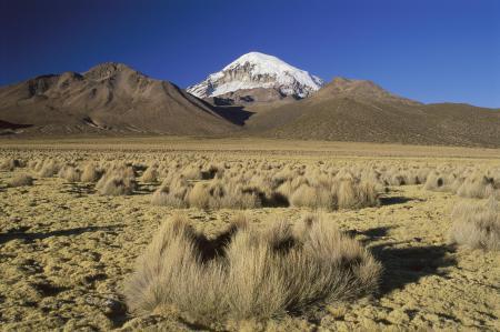 Фото сухая трава, горы, снежная вершина, небо