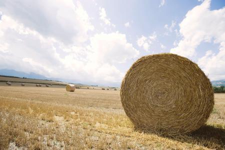 Фото Field, expanse, поле, стог