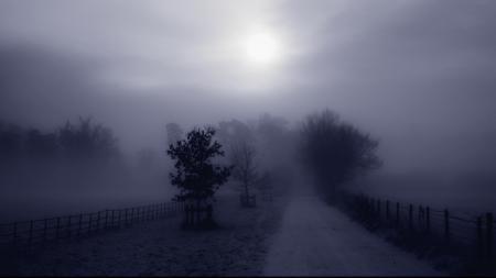 Картинки дорога, ограда, деревья, туман
