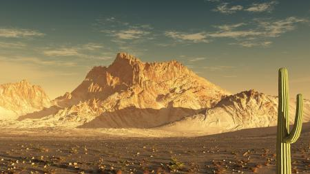 Фотографии arizona, пустыня, америка