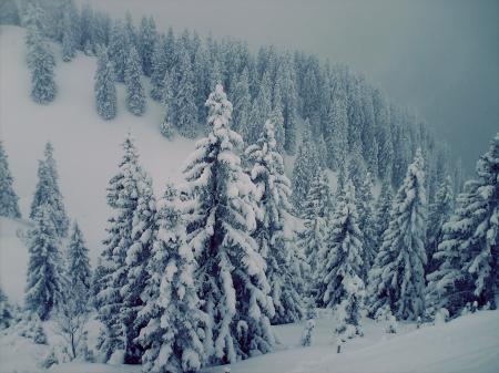 Фотографии Горы, альпы, швецария, буран