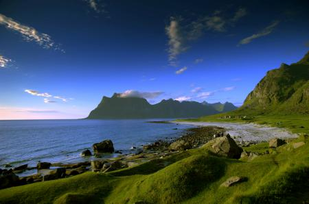 Обои берег, побережье, трава, песок
