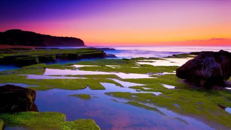 Фотографии закат, море, камни, мох