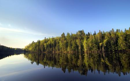 Фотографии река, лес, природа, пейзаж