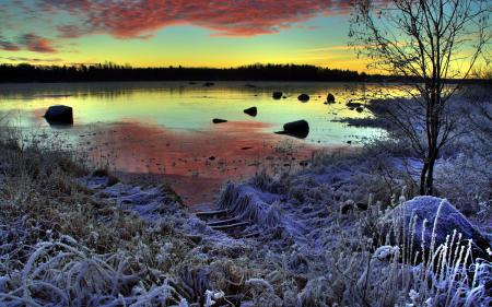 Фотографии зима, озеро, закат, иней