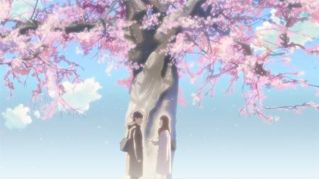 Фотографии аниме, 5 сантиметров в секунду, сакура