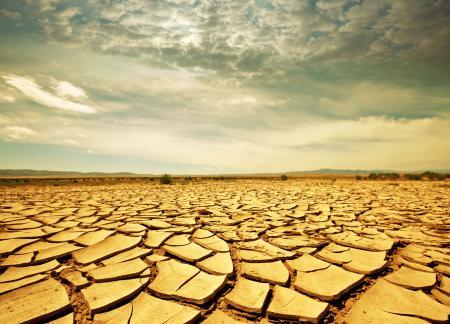 Обои Savanna, drought, landscape, Африка