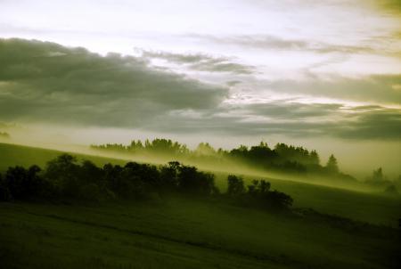 Картинки склон, луга, туман, лес
