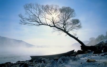Заставки лодка, дерево, река