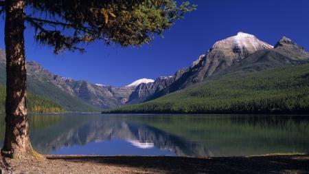 Картинки горы, озеро, деревья
