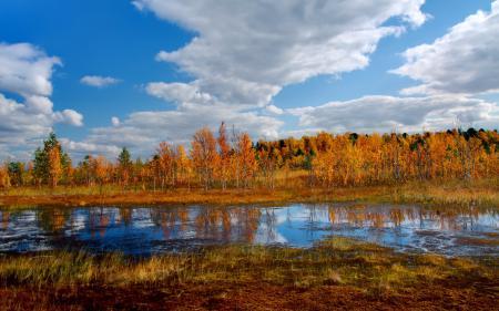 Обои осень, река, деревья, пейзаж
