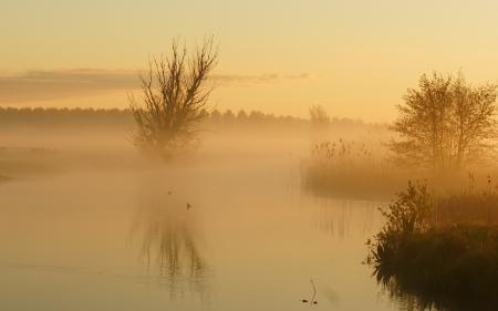 Заставки озеро, утро, туман, пейзаж