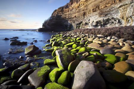 Обои море, камни, скалы, мох