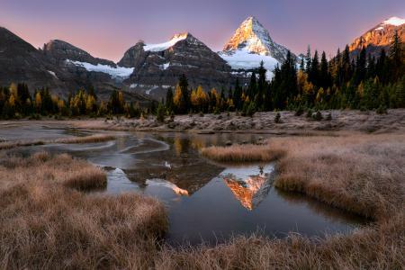 Обои горы, река, лес, трава