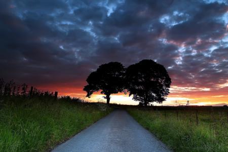 Заставки дорога, закат, деревья, пейзаж