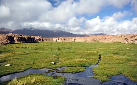 Заставки поле, горы, природа, пейзаж