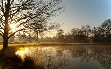 Фото Англия, озеро, солнце, деревья