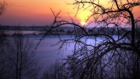 Обои закат, зима, дерево, пейзаж